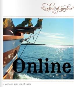 brosjyre - Online