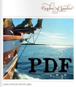 brosjyre - PDF